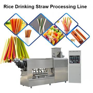 Single Screw Extruder Full Automatic Rice Straw Pasta Straw Making Machine in Korea