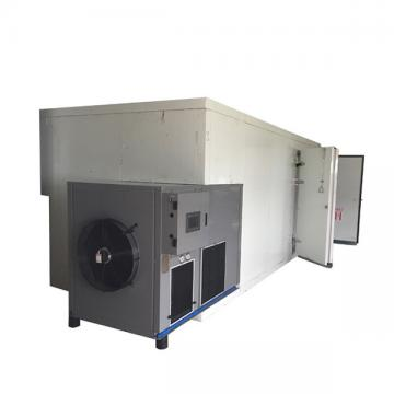 Commercial Energy Saving Fruits Mango Slice Drying Machine