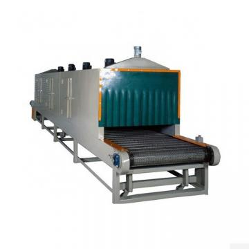 Multi-Layer Mesh Belt Dryer for Vegetables and Fruits/Nuts