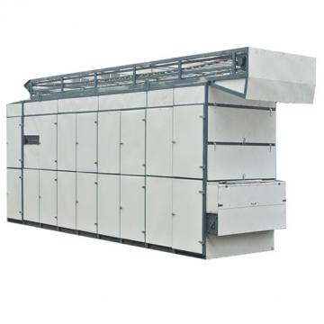 Dw Series Conveyor Mesh Belt Dryer for Ginger /Flower /Leaf
